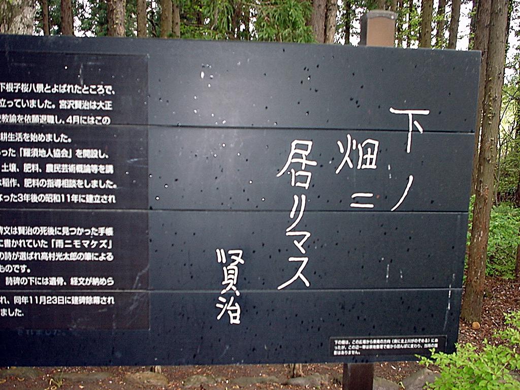 Shita_no_hatake